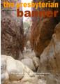 10. November 2011 Issue