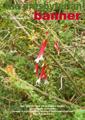 11. December 2017 Issue